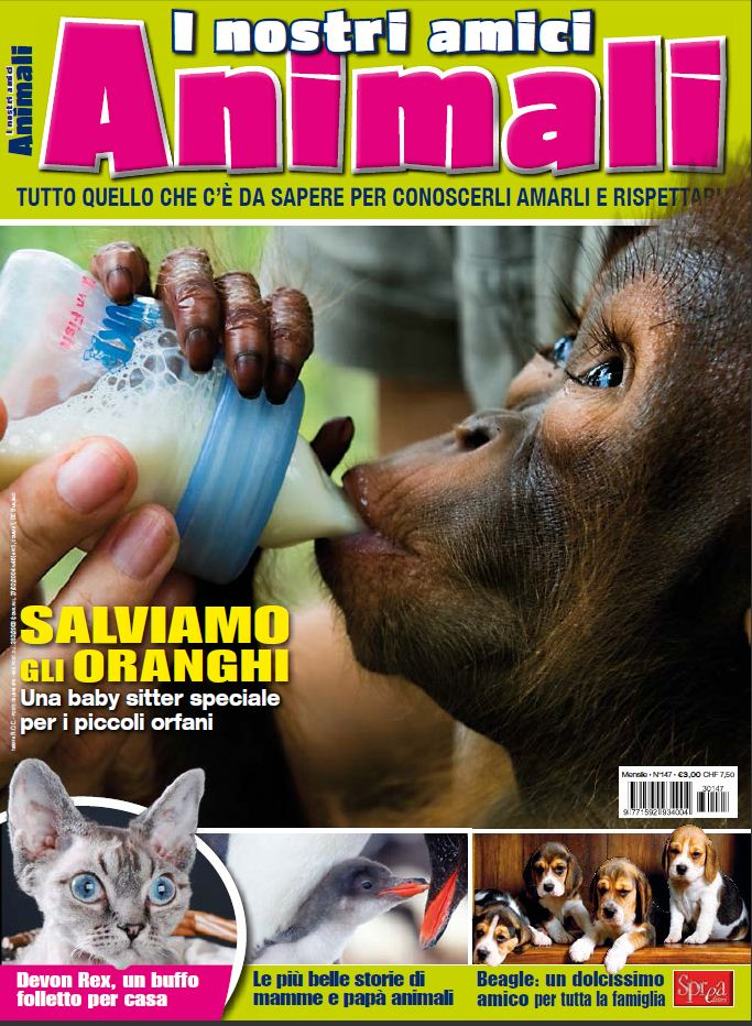 I nostri amici animali Claudia Fachinetti