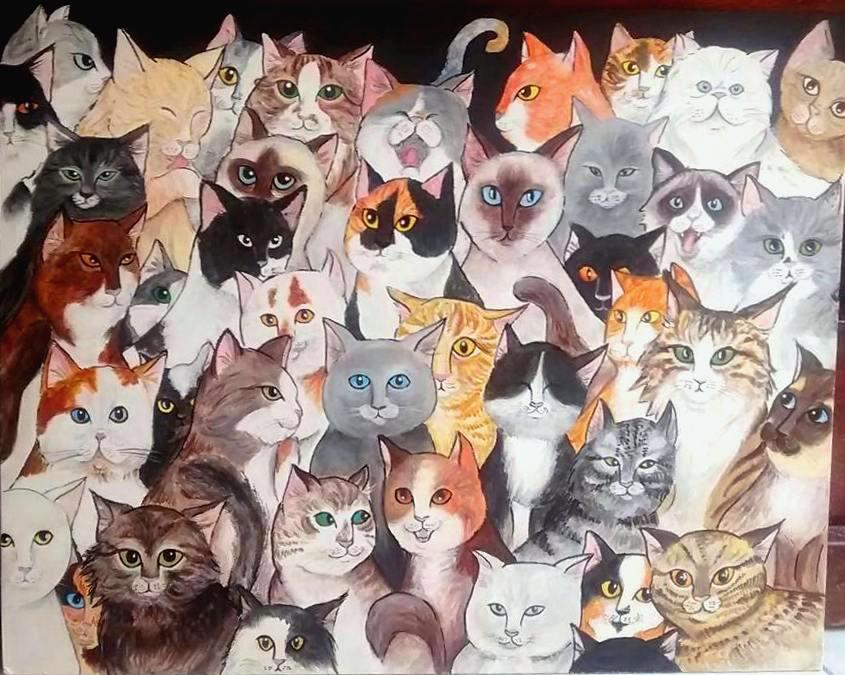44 gatti Claudia Fachinetti