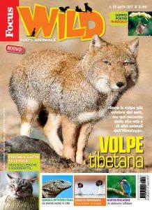 Focus wild - animali esotici in città